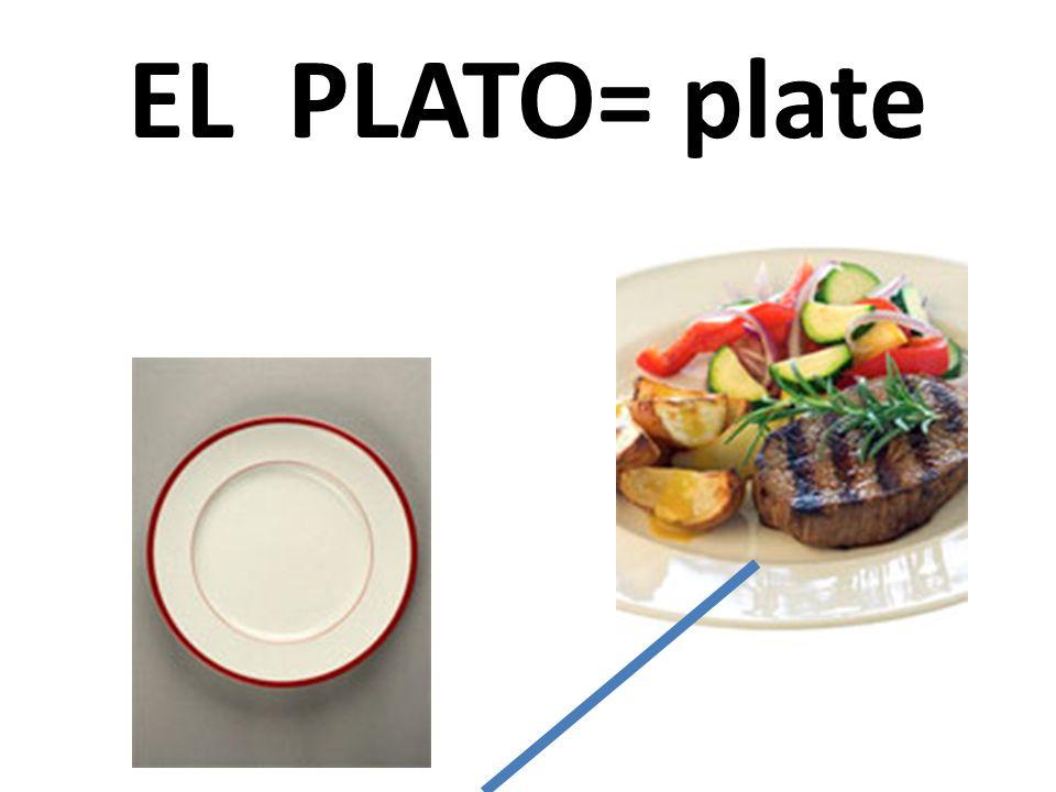 EL PLATO= plate