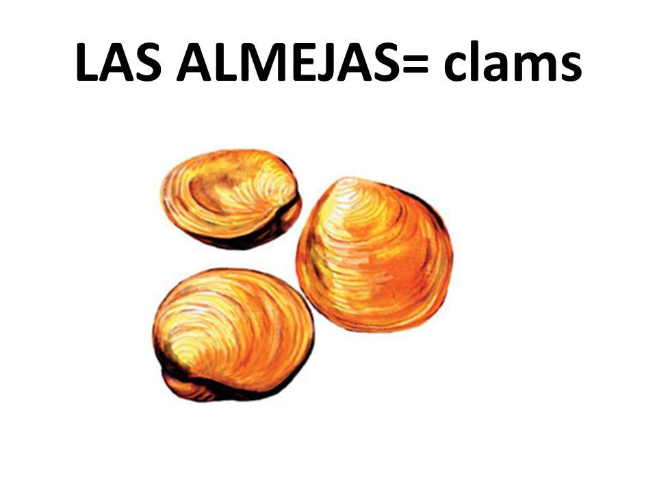 LAS ALMEJAS= clams