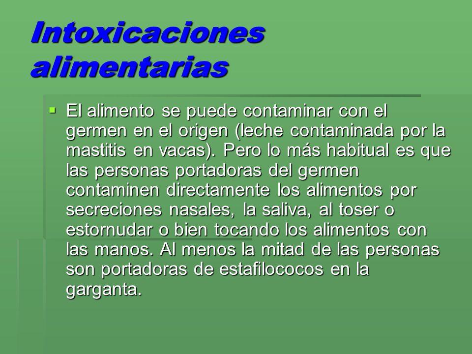 Intoxicaciones alimentarias