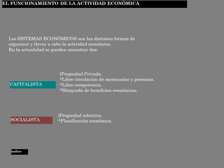 EL FUNCIONAMIENTO DE LA ACTIVIDAD ECONÓMICA