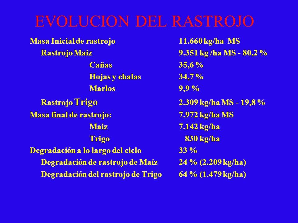 EVOLUCION DEL RASTROJO