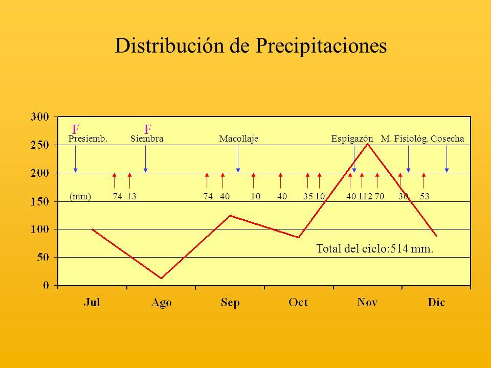 Distribución de Precipitaciones