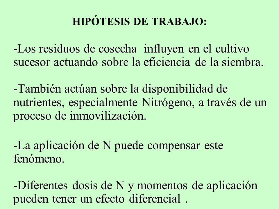 HIPÓTESIS DE TRABAJO: