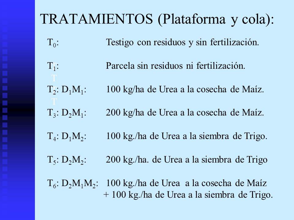 TRATAMIENTOS (Plataforma y cola):