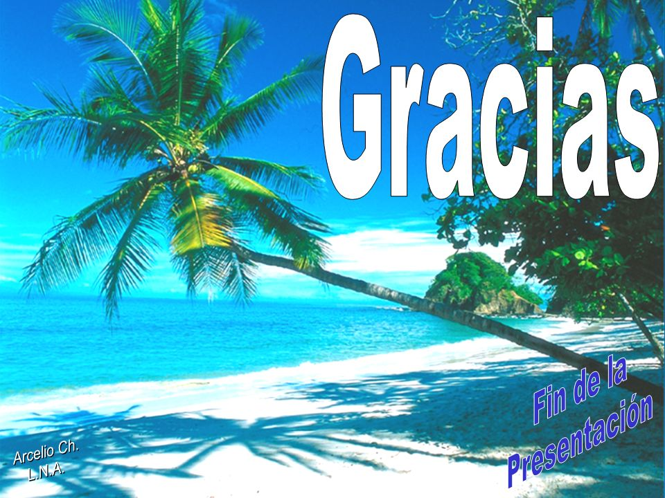 Gracias Fin de la Presentación Arcelio Ch. L.N.A. 11 11