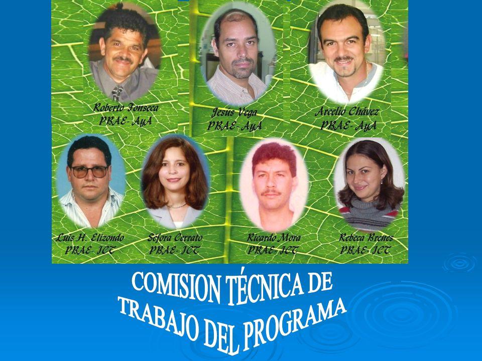 COMISION TÉCNICA DE TRABAJO DEL PROGRAMA 4 4