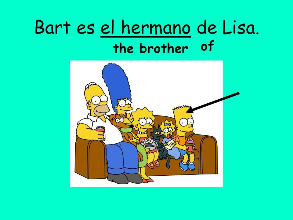 Bart es el hermano de Lisa.