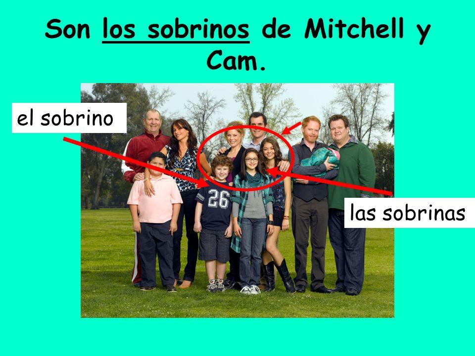 Son los sobrinos de Mitchell y Cam.