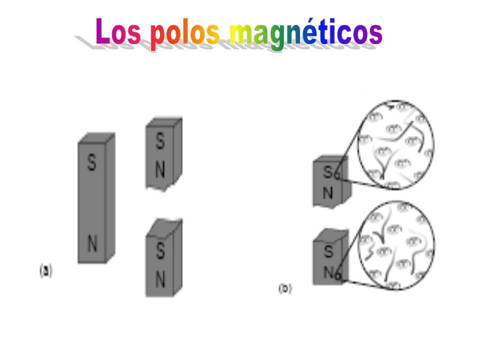 Los polos magnéticos