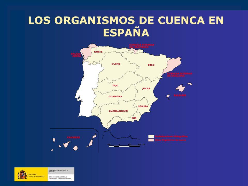 LOS ORGANISMOS DE CUENCA EN ESPAÑA