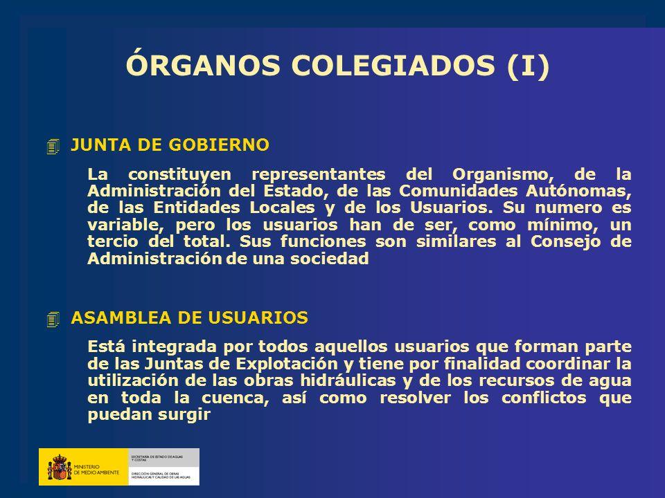 ÓRGANOS COLEGIADOS (I)