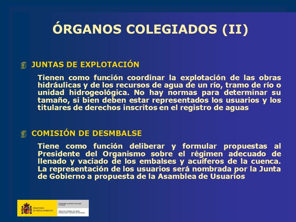 ÓRGANOS COLEGIADOS (II)