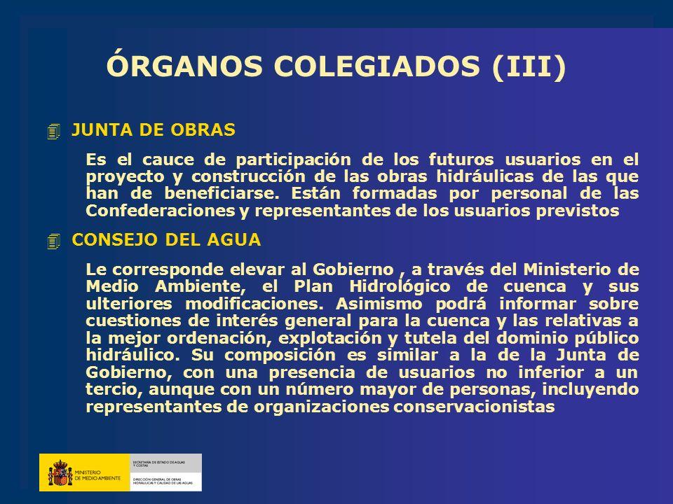 ÓRGANOS COLEGIADOS (III)