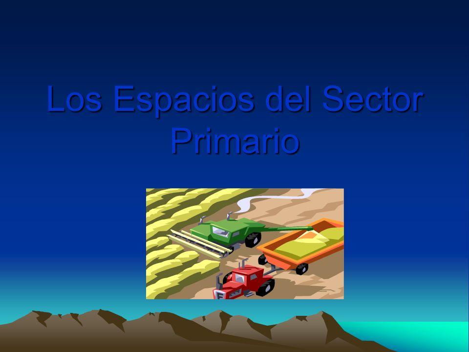 Los Espacios del Sector Primario