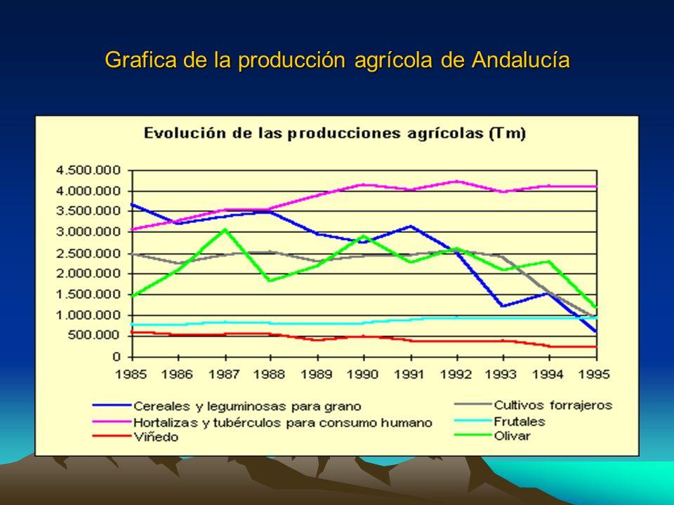 Grafica de la producción agrícola de Andalucía