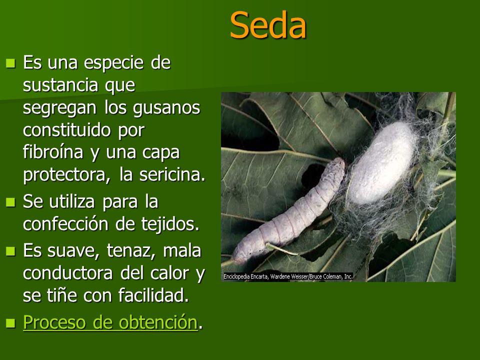 Seda Es una especie de sustancia que segregan los gusanos constituido por fibroína y una capa protectora, la sericina.