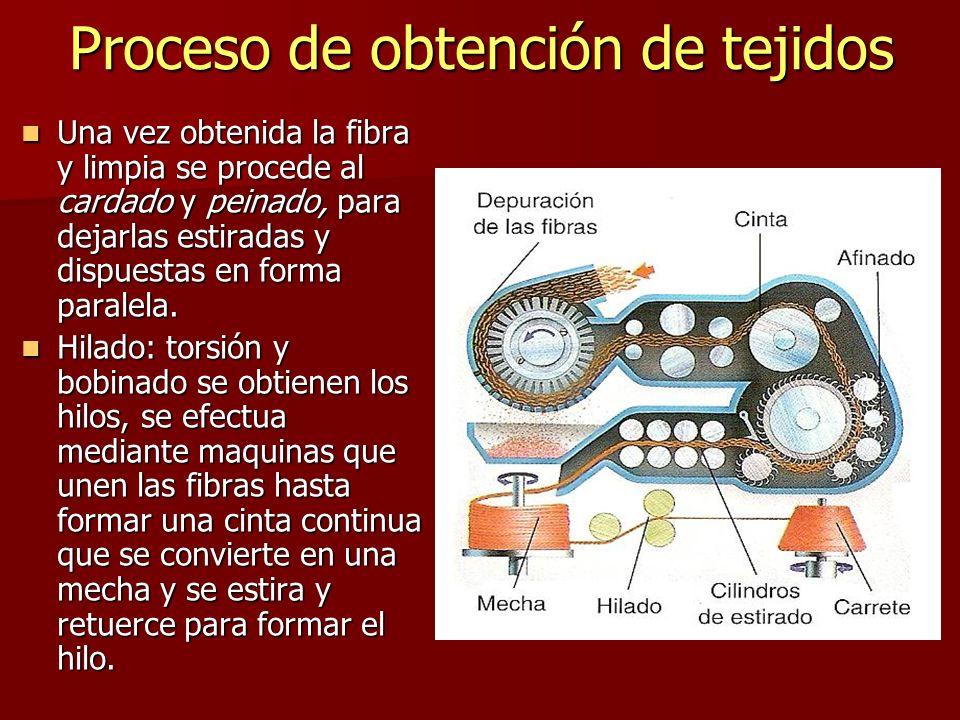 Proceso de obtención de tejidos