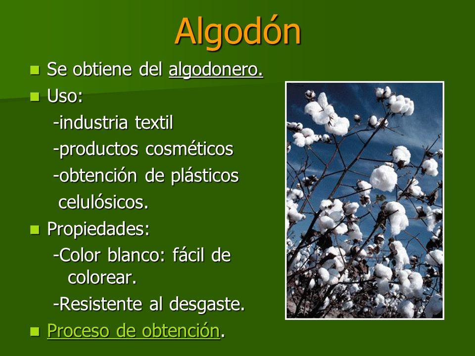 Algodón Se obtiene del algodonero. Uso: -industria textil