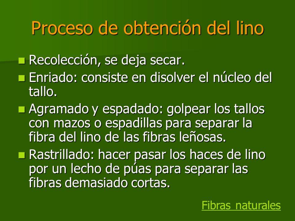 Proceso de obtención del lino