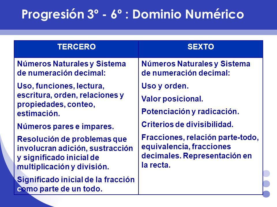 Progresión 3º - 6º : Dominio Numérico
