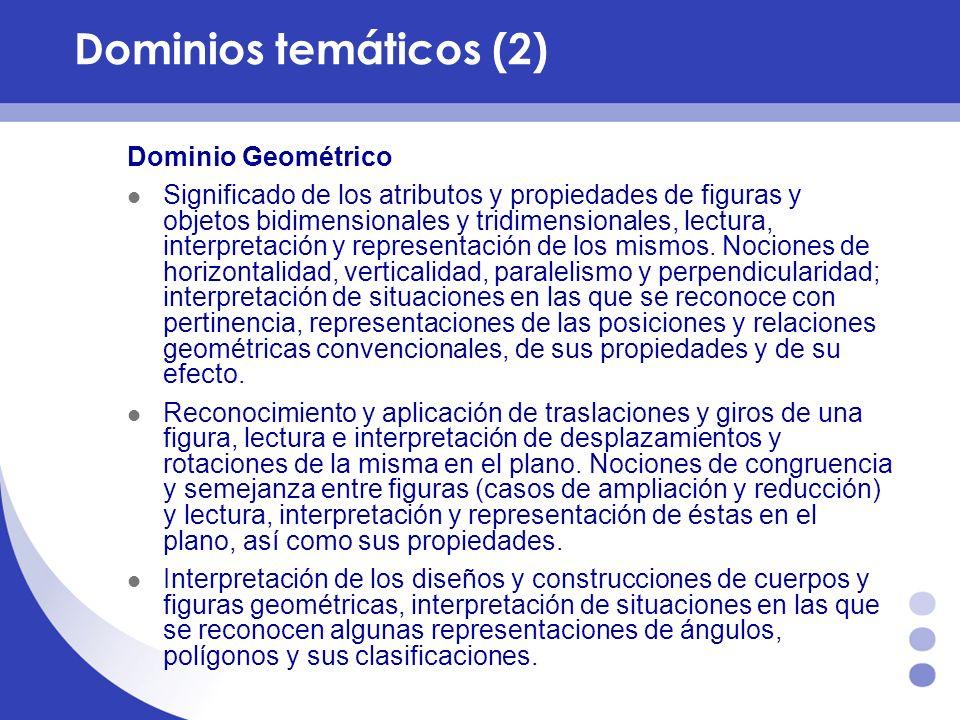 Dominios temáticos (2) Dominio Geométrico