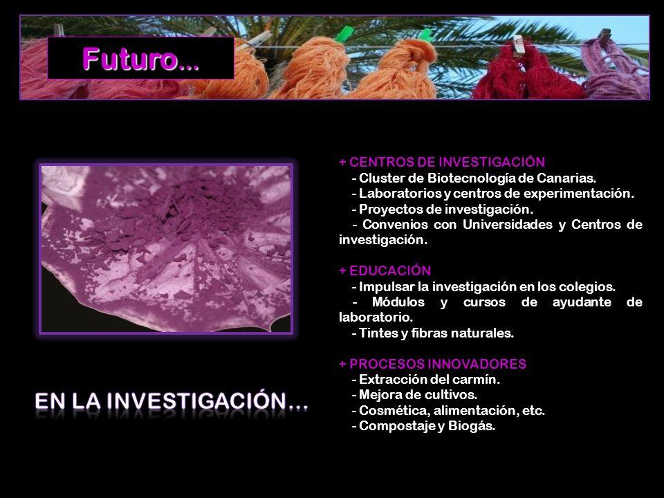 Futuro… EN LA INVESTIGACIÓN… + CENTROS DE INVESTIGACIÓN