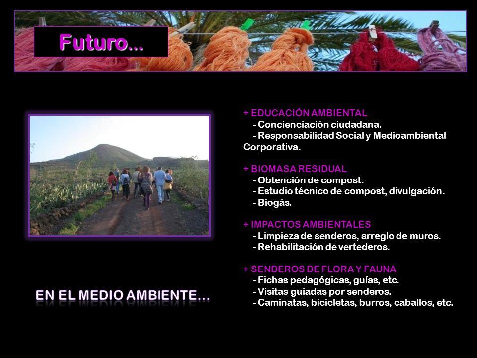 Futuro… EN EL MEDIO AMBIENTE… + EDUCACIÓN AMBIENTAL