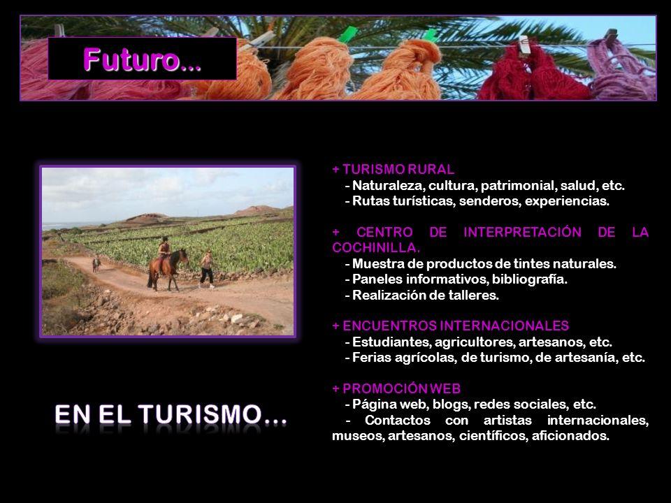Futuro… EN EL TURISMO… + TURISMO RURAL