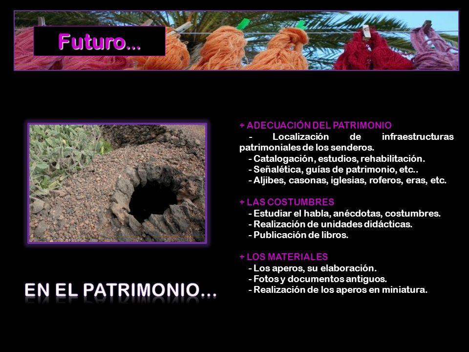 Futuro… EN EL PATRIMONIO… + ADECUACIÓN DEL PATRIMONIO