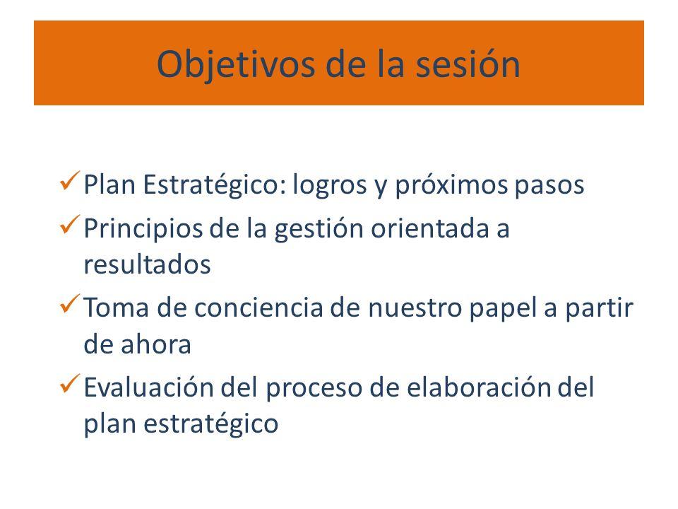 Objetivos de la sesión Plan Estratégico: logros y próximos pasos