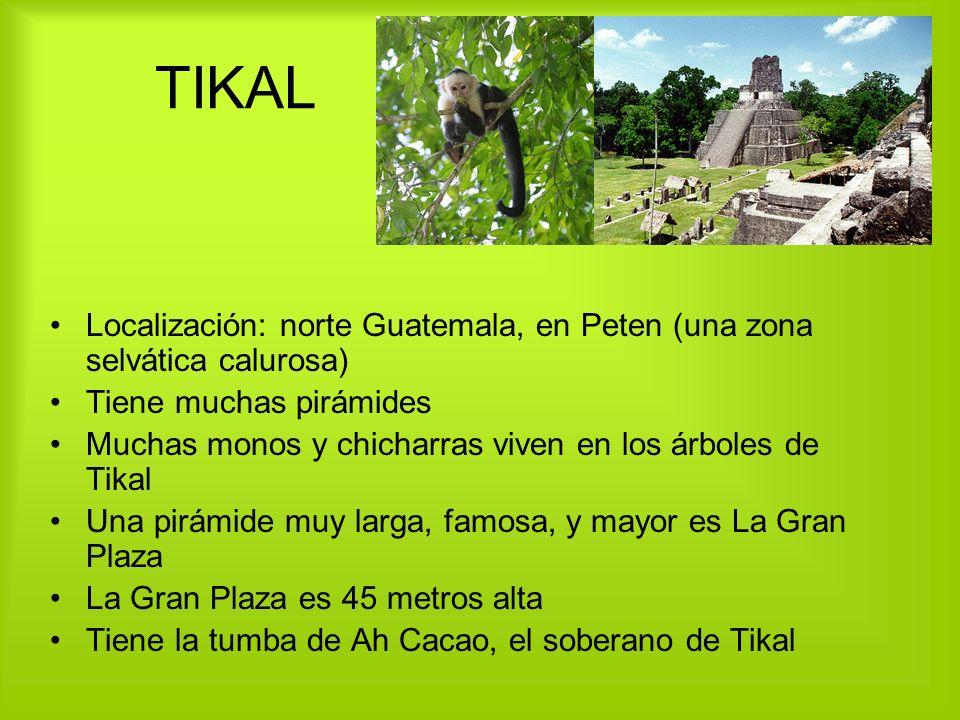 TIKAL Localización: norte Guatemala, en Peten (una zona selvática calurosa) Tiene muchas pirámides.