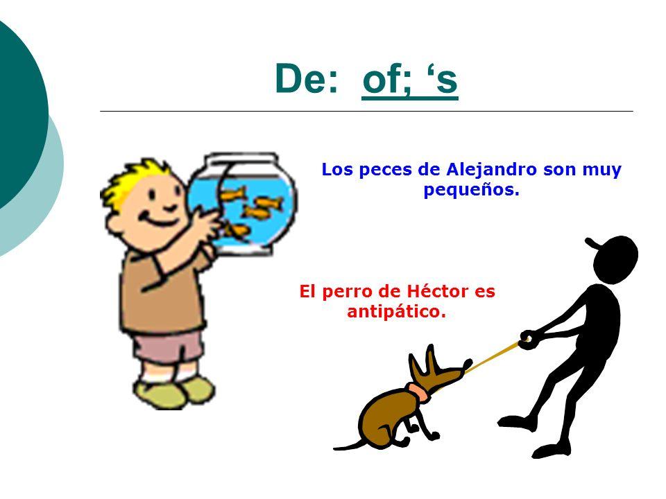 De: of; 's Los peces de Alejandro son muy pequeños.