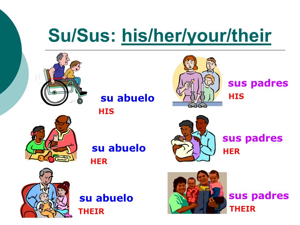 Su/Sus: his/her/your/their