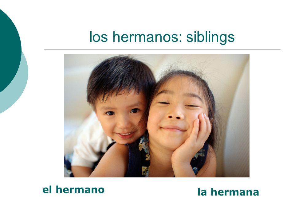 los hermanos: siblings