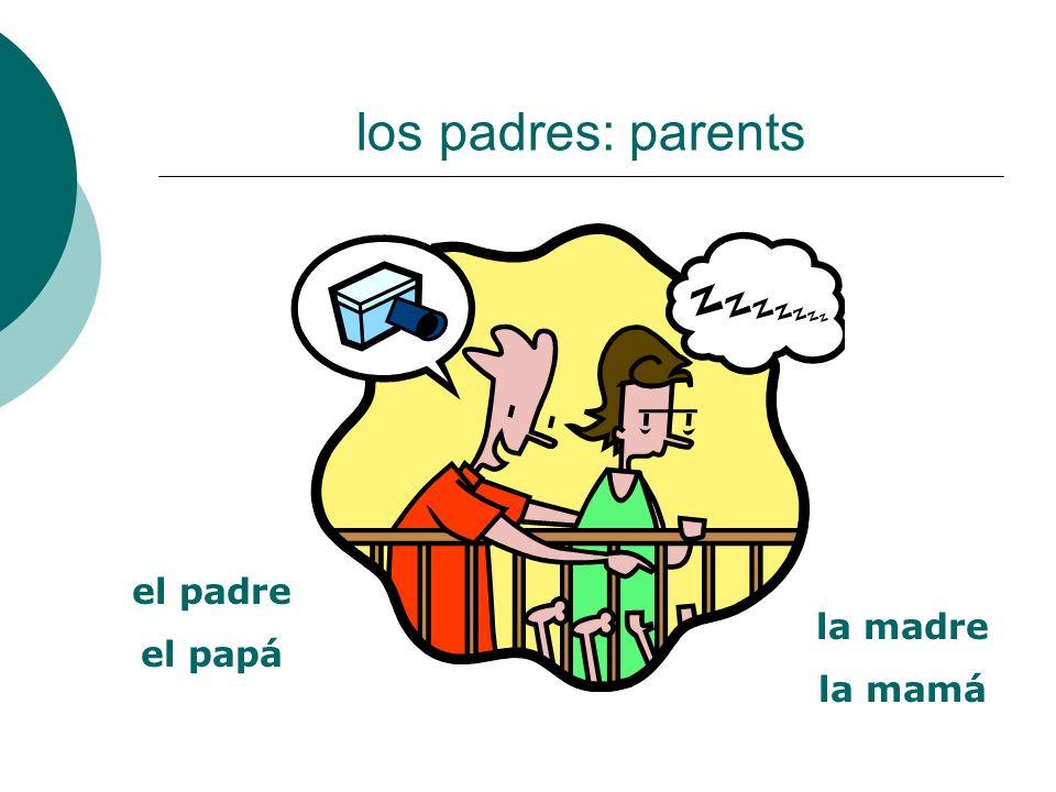 los padres: parents el padre el papá la madre la mamá