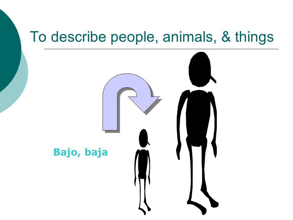 To describe people, animals, & things