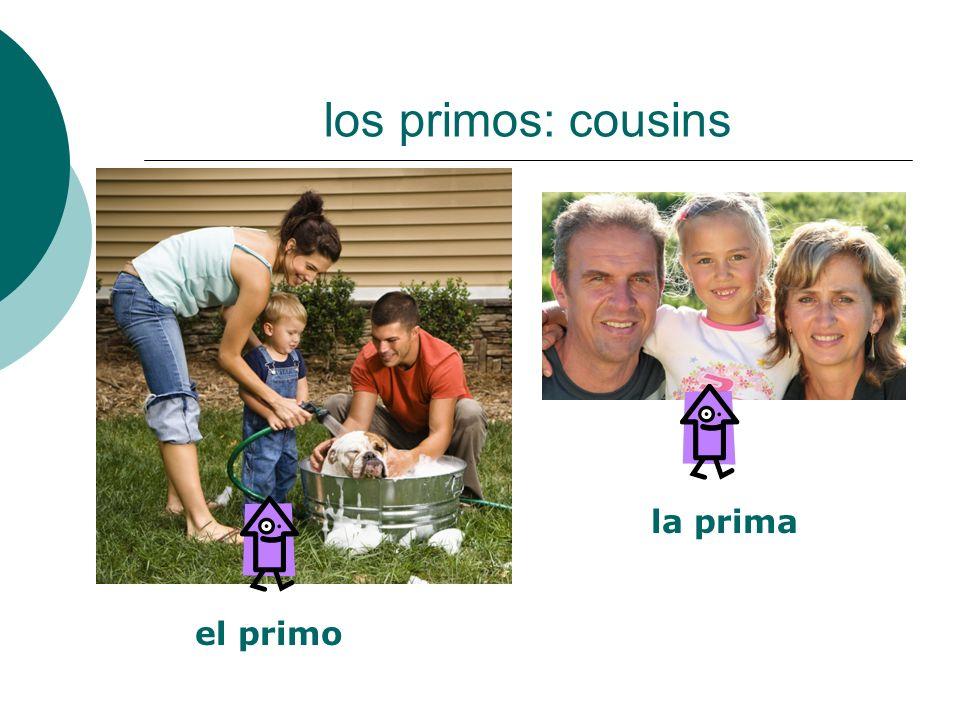 los primos: cousins la prima el primo