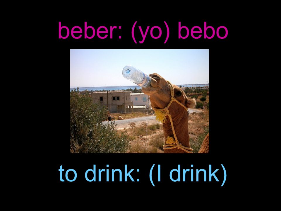 beber: (yo) bebo to drink: (I drink)
