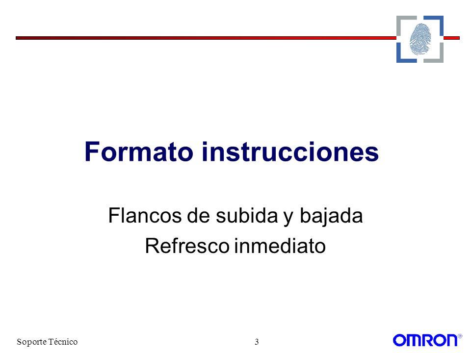 Formato instrucciones