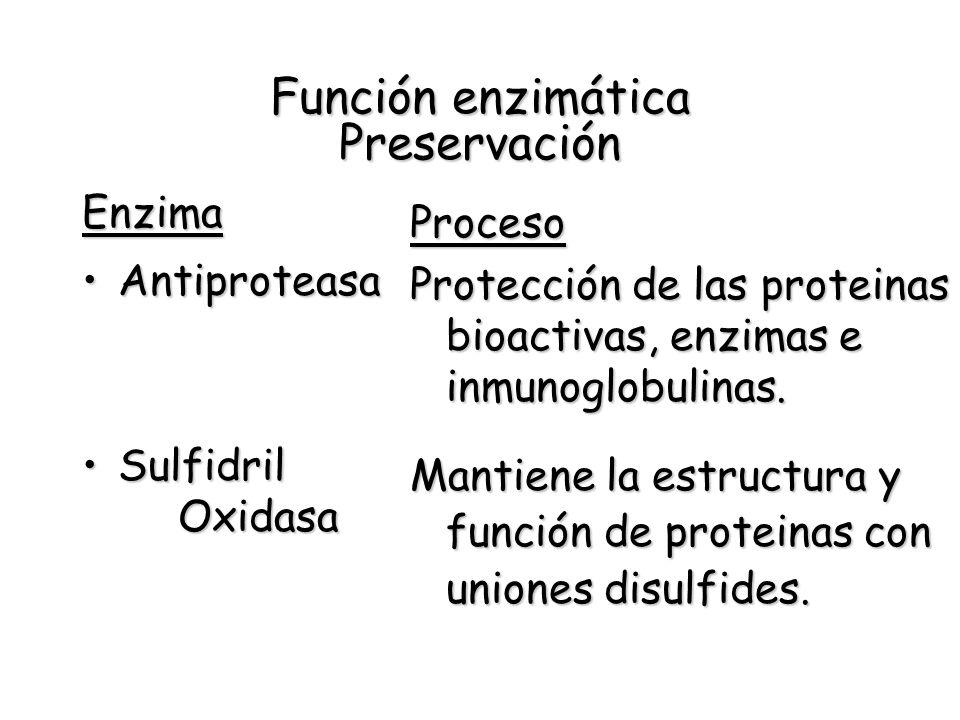Función enzimática Preservación