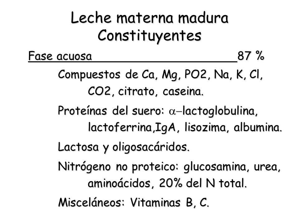 Leche materna madura Constituyentes