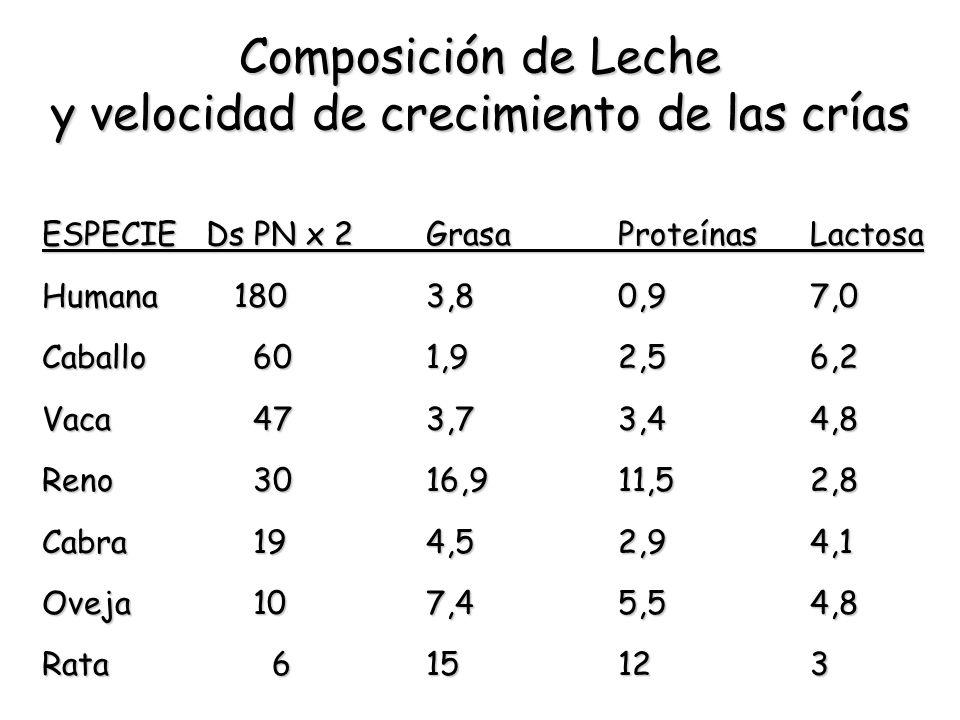 Composición de Leche y velocidad de crecimiento de las crías
