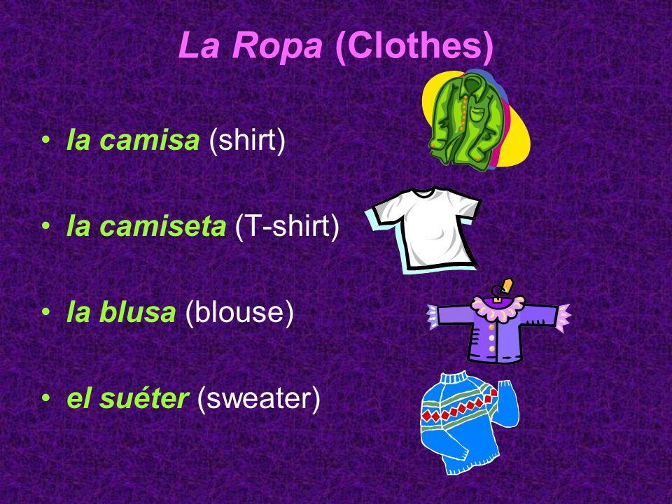 La Ropa (Clothes) la camisa (shirt) la camiseta (T-shirt)
