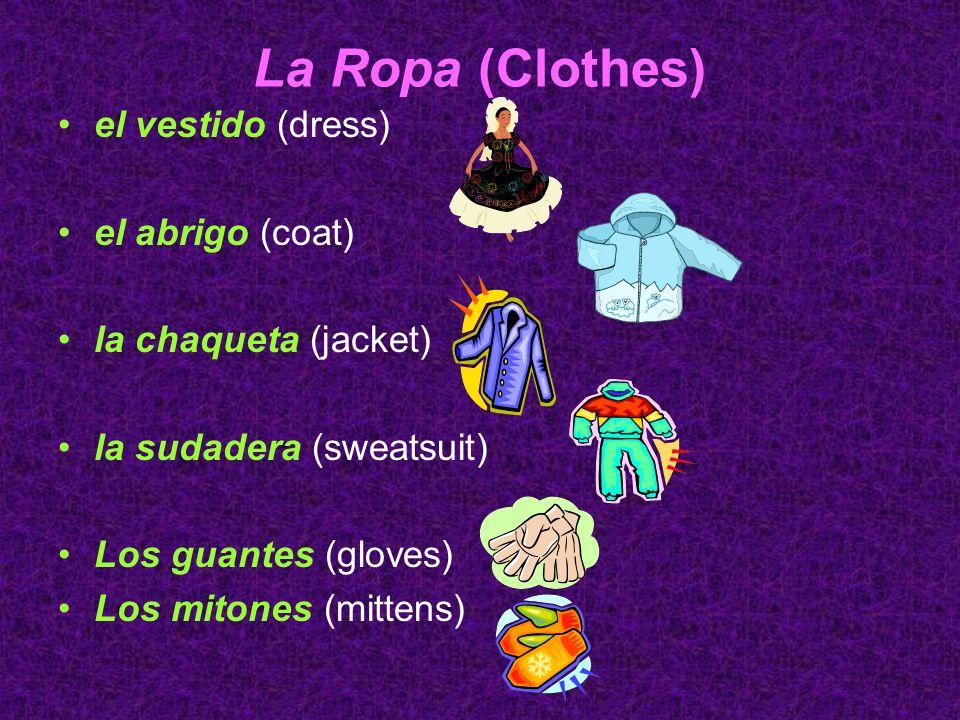 La Ropa (Clothes) el vestido (dress) el abrigo (coat)