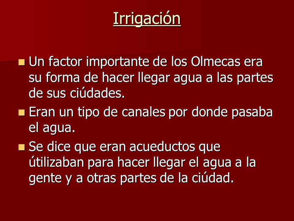 Irrigación Un factor importante de los Olmecas era su forma de hacer llegar agua a las partes de sus ciúdades.