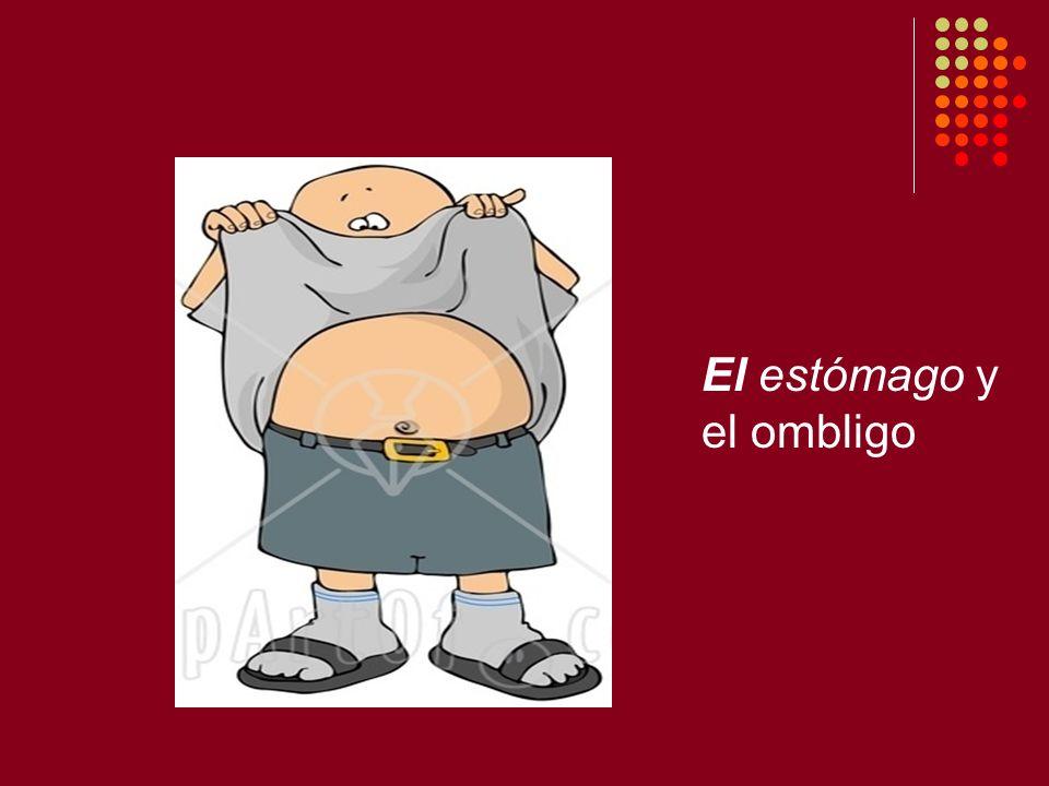El estómago y el ombligo