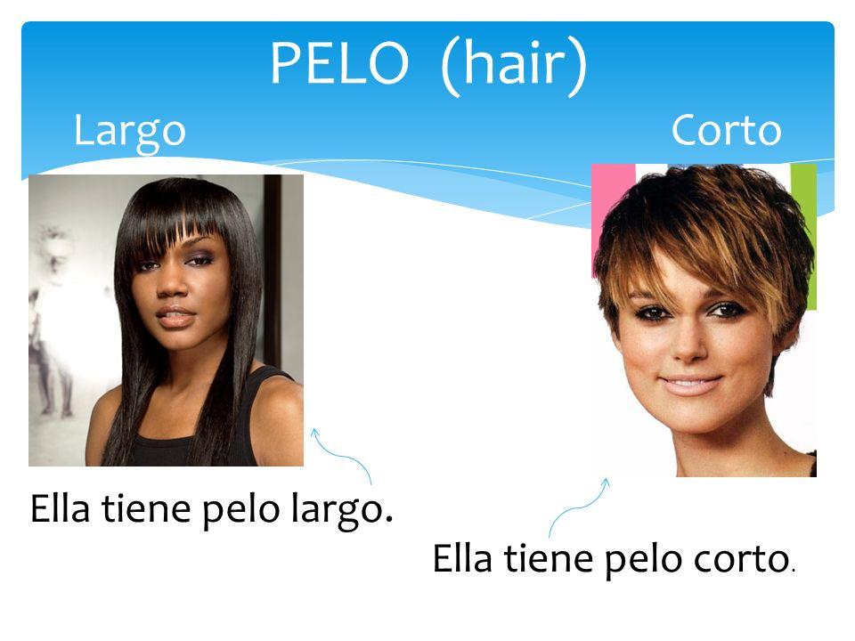 PELO (hair) Largo Corto