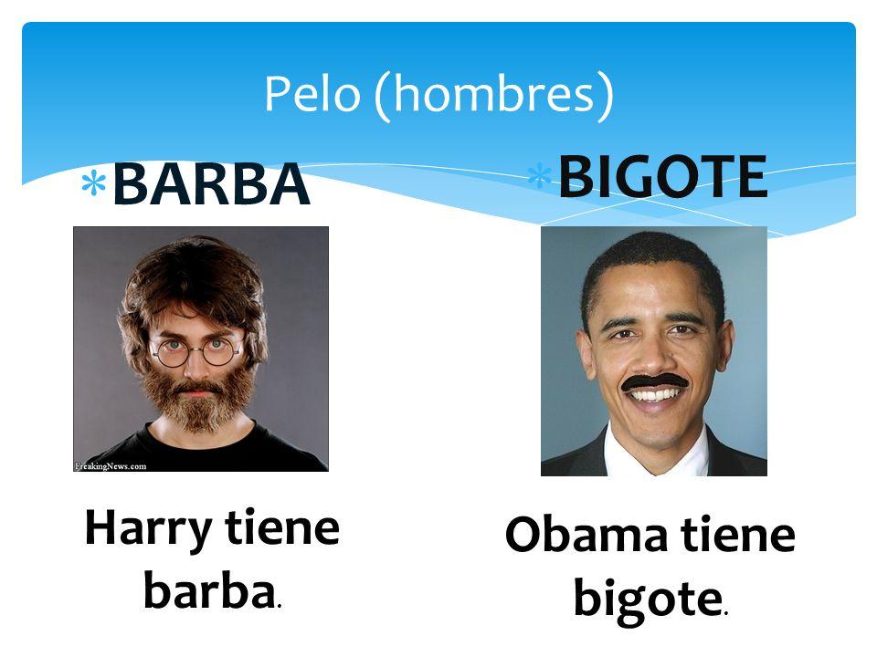 Pelo (hombres) BIGOTE BARBA Harry tiene barba. Obama tiene bigote.