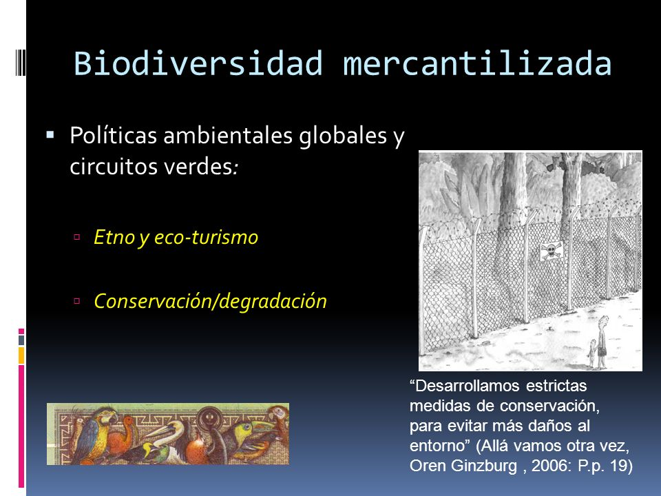 Biodiversidad mercantilizada