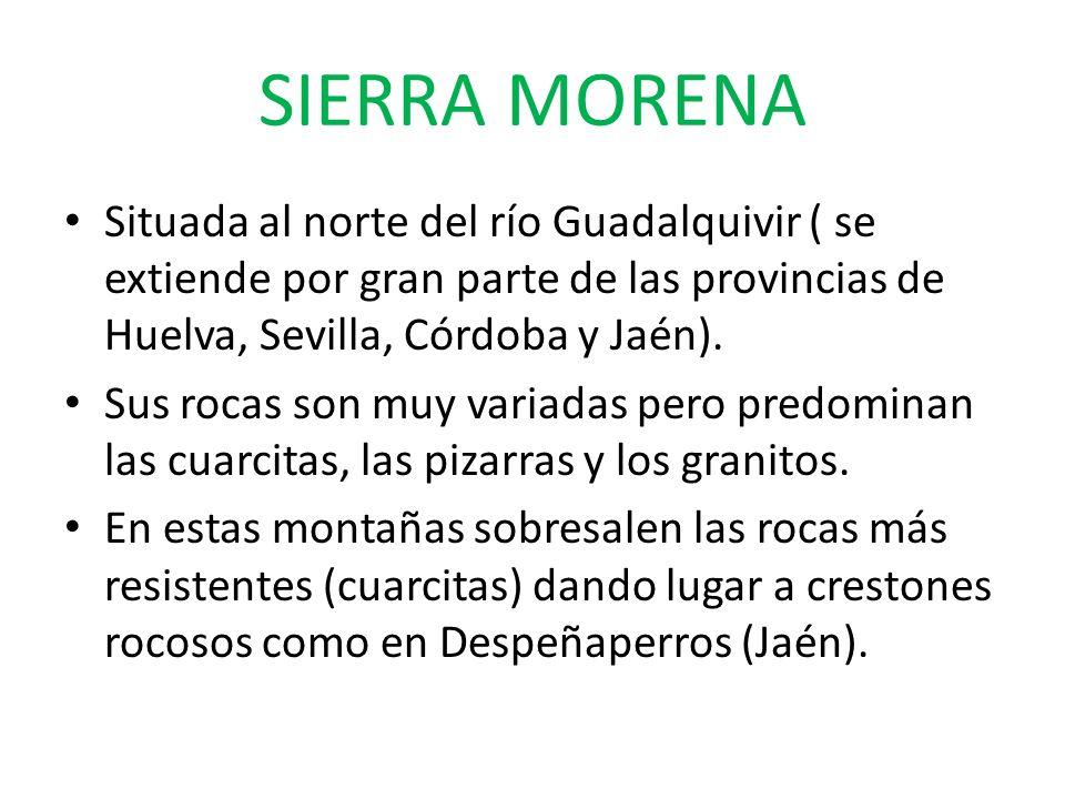 SIERRA MORENASituada al norte del río Guadalquivir ( se extiende por gran parte de las provincias de Huelva, Sevilla, Córdoba y Jaén).